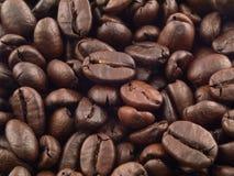 1份背景豆咖啡 免版税库存照片