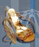 1双鞋子 免版税库存照片