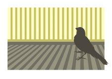 1只鸟金丝雀 免版税库存图片