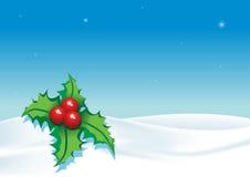 1圣诞节横向 免版税库存图片