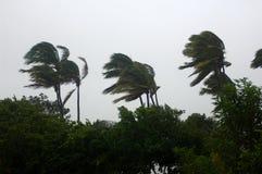 1场飓风 免版税库存图片