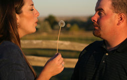 1对吹的夫妇亲吻 免版税库存图片