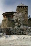 1座城堡利希滕斯泰因 免版税图库摄影