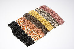 1张豆地毯 库存照片