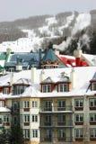 1手段滑雪 免版税库存照片