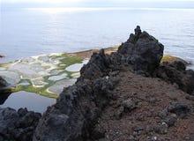 1月Mayen海岛海岸线  免版税库存照片