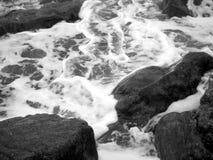 1朵海浪 免版税库存照片