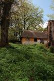 1村庄爱尔兰老 库存图片