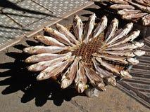 1条干鱼 免版税图库摄影