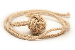 1条拳头大麻结猴子绳索 库存照片