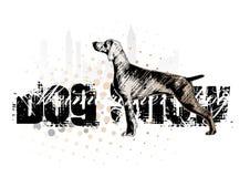1条狗 免版税库存照片