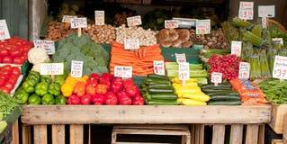1棵立场蔬菜 免版税图库摄影