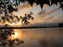 1湖芦苇s日出 库存照片