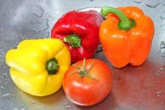 1湿的蔬菜 库存图片