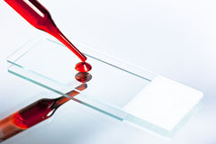 1滴血液丢弃了在幻灯片上的显微镜 免版税库存照片