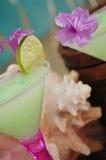1热带的鸡尾酒 免版税库存图片