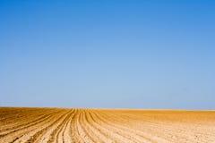 1片农场土地 库存照片