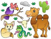 1片动物收集沙漠 免版税库存照片