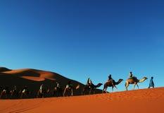 1片沙漠撒哈拉大沙漠 免版税库存图片