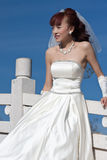 1美好的新娘桥梁白色 免版税库存照片