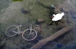 1辆自行车没有乘驾感谢 免版税库存照片