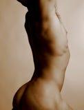 1 αρσενικός nude Στοκ Εικόνα