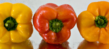 1 γλυκό σειράς πιπεριών Στοκ εικόνες με δικαίωμα ελεύθερης χρήσης