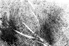 1 δακτυλικό αποτύπωμα Στοκ εικόνα με δικαίωμα ελεύθερης χρήσης