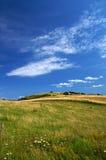 1 δανικό καλοκαίρι τοπίων Στοκ εικόνα με δικαίωμα ελεύθερης χρήσης
