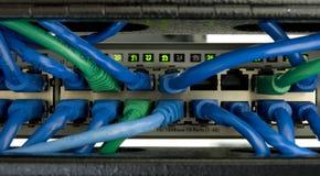 1 διακόπτης ethernet Στοκ Φωτογραφίες