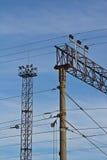 1 ηλεκτρική ράγα πόλων jpg Στοκ εικόνες με δικαίωμα ελεύθερης χρήσης