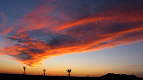 1 ηλιοβασίλεμα puerto penasco Στοκ φωτογραφία με δικαίωμα ελεύθερης χρήσης