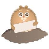 1 ημέρα groundhog Στοκ Εικόνες