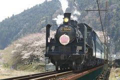 1 Ιαπωνία έξαλλη Στοκ εικόνες με δικαίωμα ελεύθερης χρήσης