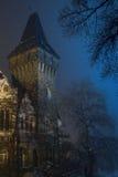 1 κάστρο Στοκ εικόνες με δικαίωμα ελεύθερης χρήσης