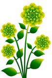 1 λουλούδι Στοκ Εικόνα
