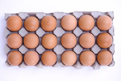 1 μανία αυγών κοτόπουλου Στοκ φωτογραφίες με δικαίωμα ελεύθερης χρήσης