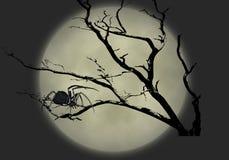 1 μαύρη χήρα απεικόνισης στοκ εικόνα με δικαίωμα ελεύθερης χρήσης