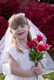 1 νύφη λίγα Στοκ Εικόνες