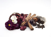 1 οικολογική βασική parfume σ&epsilon Στοκ φωτογραφίες με δικαίωμα ελεύθερης χρήσης