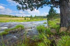 1 ποταμός rzav Στοκ φωτογραφίες με δικαίωμα ελεύθερης χρήσης
