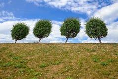 1 πράσινη σειρά Στοκ φωτογραφία με δικαίωμα ελεύθερης χρήσης