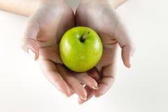 1 πράσινο μήλου Στοκ Εικόνες