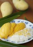 1 ρύζι μάγκο κολλώδες Στοκ φωτογραφία με δικαίωμα ελεύθερης χρήσης