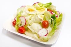 1 σειρά σαλάτας Στοκ Εικόνες
