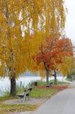 1 φθινόπωρο καμία όχθη ποταμού Στοκ εικόνα με δικαίωμα ελεύθερης χρήσης