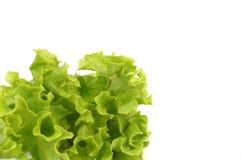1 φρέσκο salat Στοκ Εικόνα