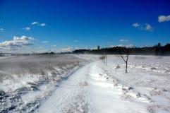 1 χιόνι χιονοθύελλας Στοκ Εικόνες