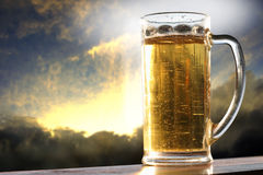 1 χρυσός μπύρας Στοκ φωτογραφία με δικαίωμα ελεύθερης χρήσης