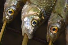 1 ψημένο στη σχάρα ψάρι λεπτο& Στοκ Εικόνες